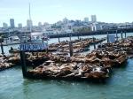 Pier 69 in SF