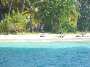 Beautiful beach in San Blas